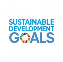 Thi hành UN SDGs